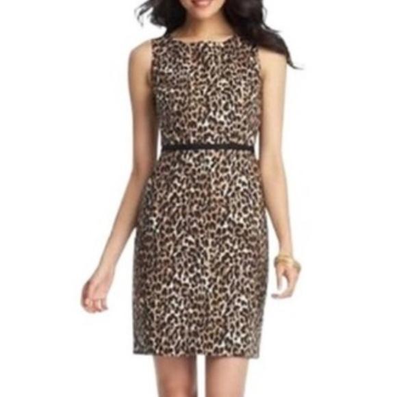 LOFT Dresses & Skirts - LOFT animal print career dress